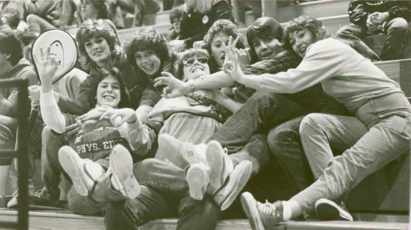 women_in_bleachers1980s.jpg
