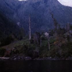 East side of Lake Caburgua