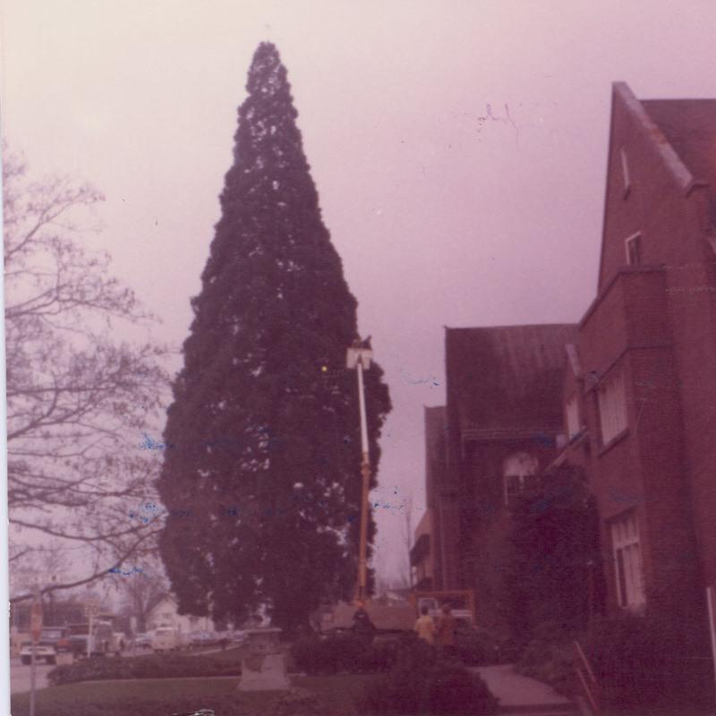 TreeLighting_1968.jpg