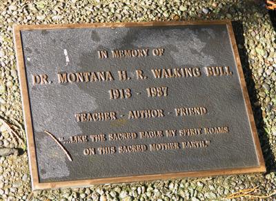 walking-bull-plaque.jpg