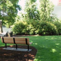 twila-bench-facing-rice.jpg